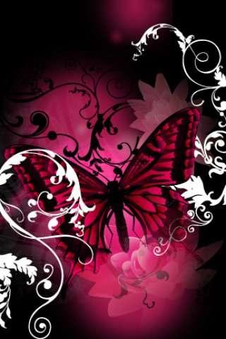 http://img403.imageshack.us/img403/2513/pinkbutterflyt.jpg