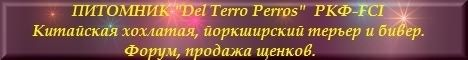 Питомник «Del Terro Perros»  (Москва, МО)